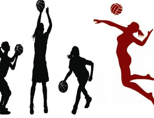 Girls Skills Clinics and Open Gym
