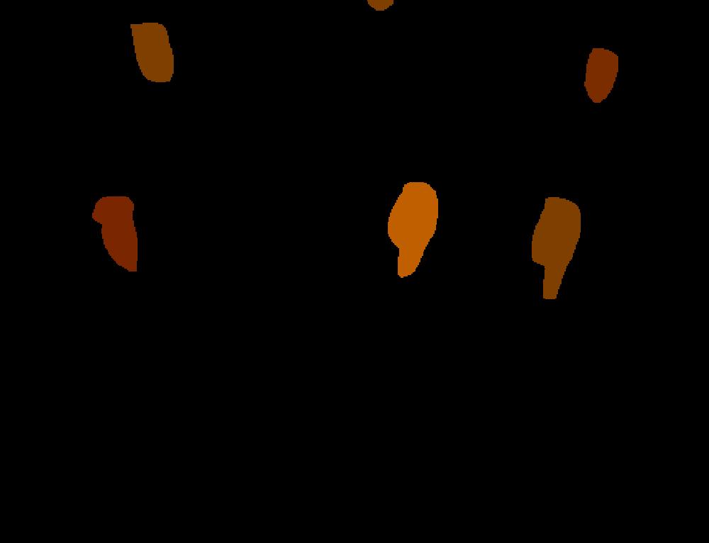 Archdiocesan Youth Choir (grades 5-8)
