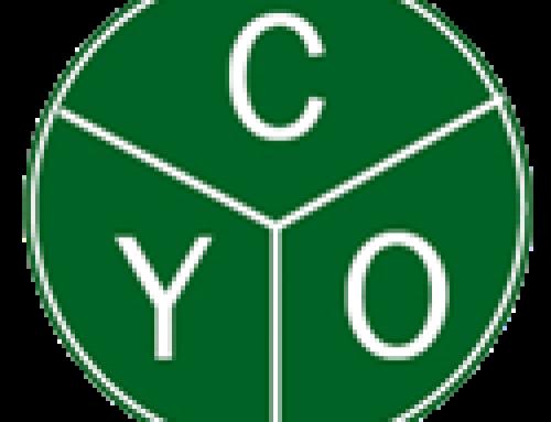 CYO Service award
